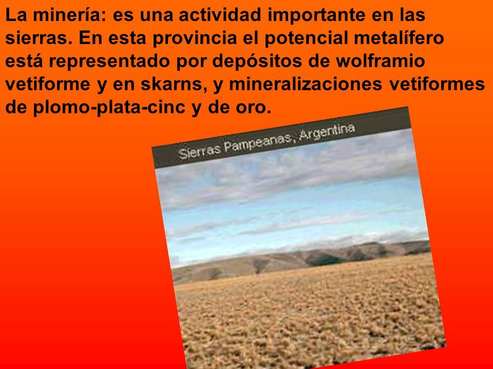El Valle de la Luna: creado en 1971, con una superficie de 63.000 hectáreas (50 kilómetros de largo por 15 de ancho) EL VALLE DE LA LUNA