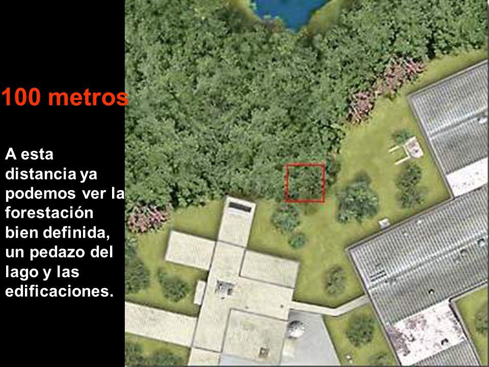 A esta distancia ya podemos ver la forestación bien definida, un pedazo del lago y las edificaciones.