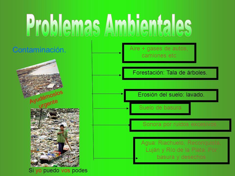 Aire + gases de autos, camiones etc Suelo de basura Sonora por ruidos excesivos. Agua: Riachuelo, Reconquista, Luján y Río de la Plata. Por basura y d