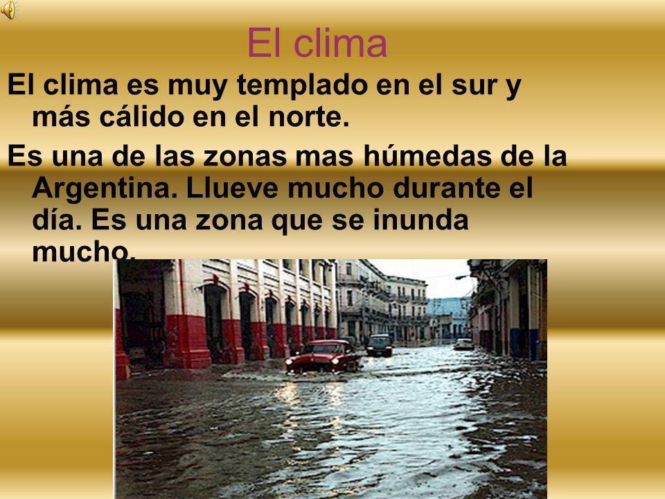 El clima El clima es muy templado en el sur y más cálido en el norte. Es una de las zonas mas húmedas de la Argentina. Llueve mucho durante el día. Es