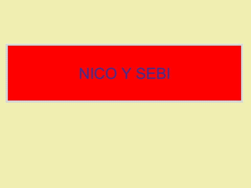 NICO Y SEBI