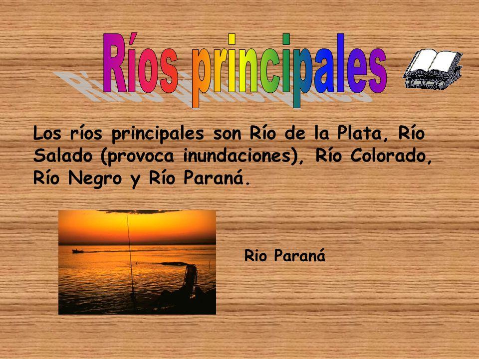 Los ríos principales son Río de la Plata, Río Salado (provoca inundaciones), Río Colorado, Río Negro y Río Paraná.