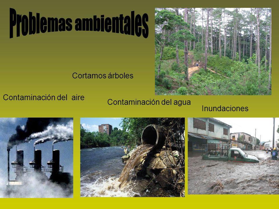 Contaminación del aire Contaminación del agua Inundaciones Cortamos árboles