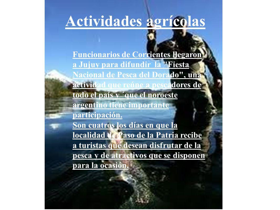 Actividades agrícolas Funcionarios de Corrientes llegaron a Jujuy para difundir la