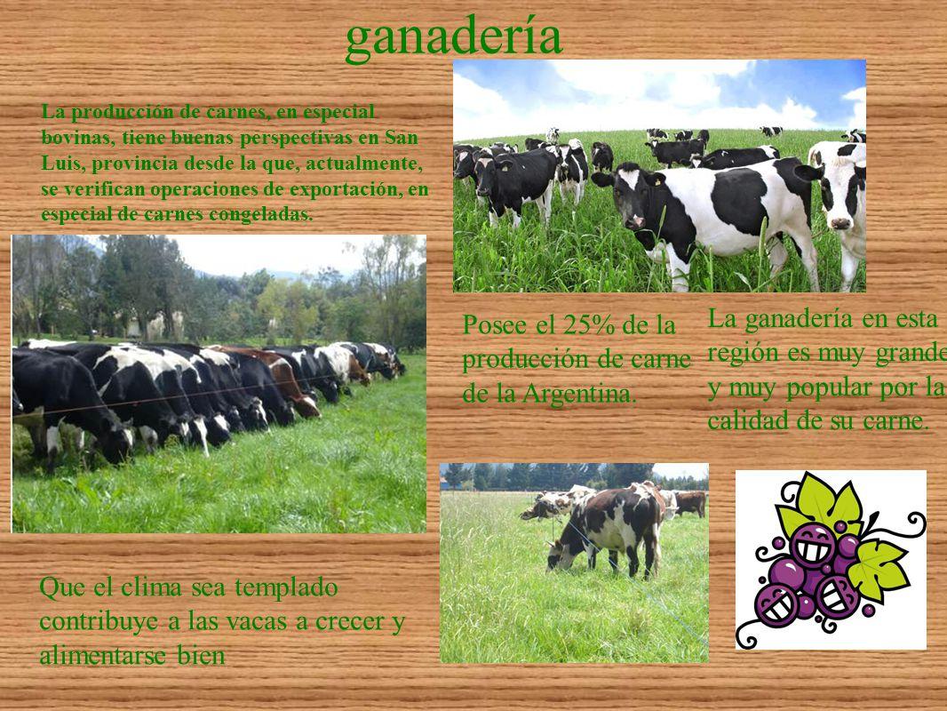 ganadería La producción de carnes, en especial bovinas, tiene buenas perspectivas en San Luis, provincia desde la que, actualmente, se verifican opera