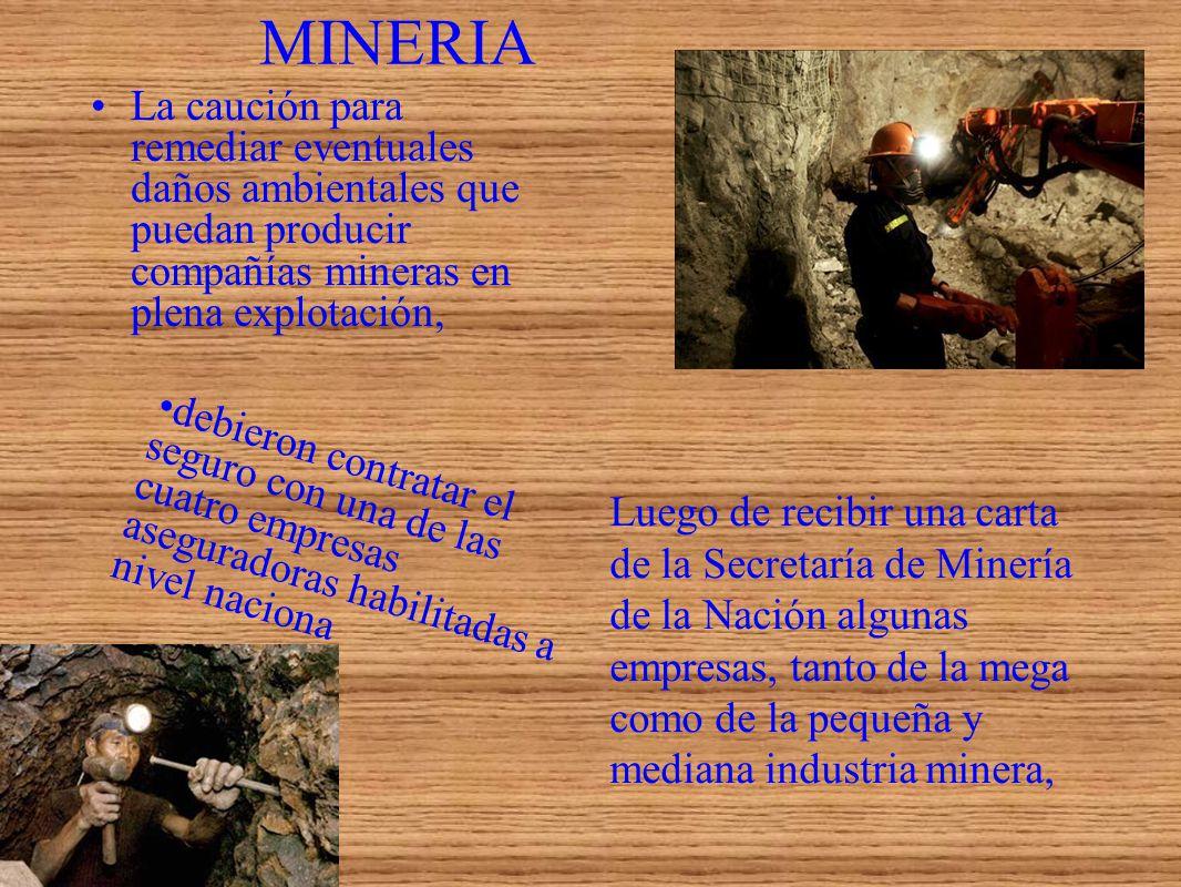MINERIA La caución para remediar eventuales daños ambientales que puedan producir compañías mineras en plena explotación, Luego de recibir una carta d