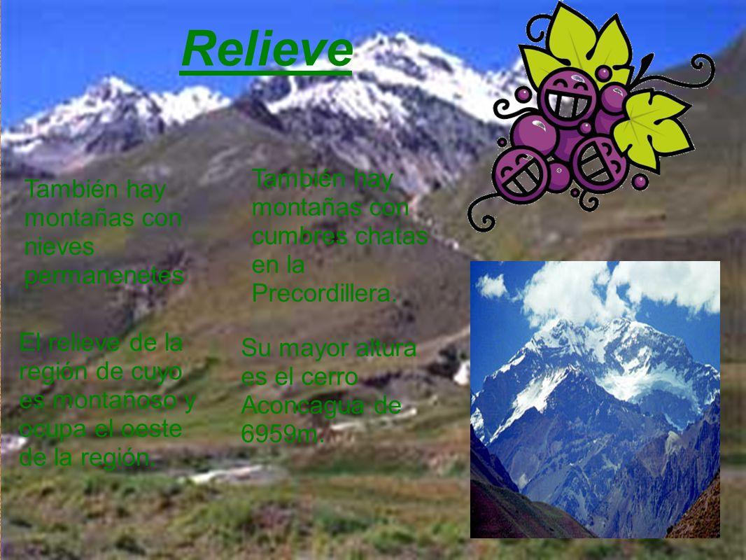 Relieve El relieve de la región de cuyo es montañoso y ocupa el oeste de la región. Su mayor altura es el cerro Aconcagua de 6959m. También hay montañ