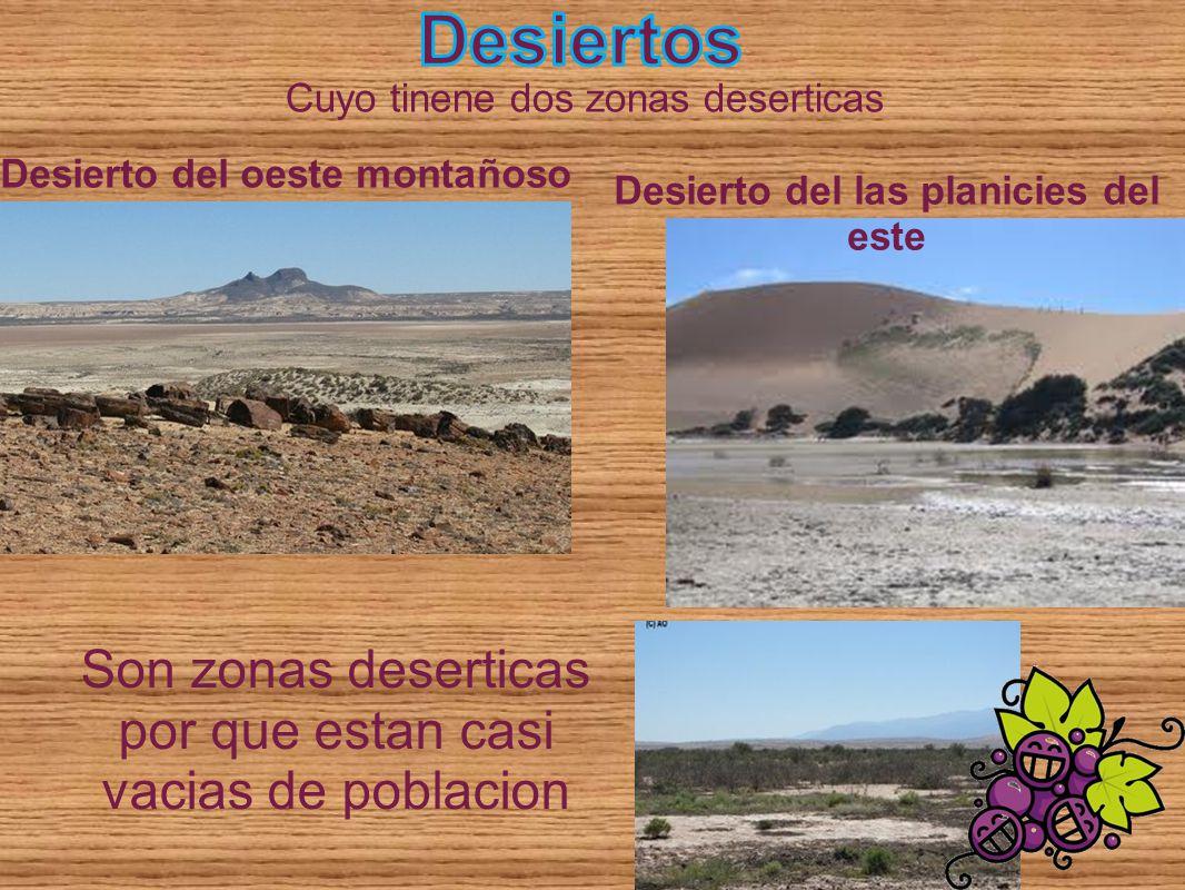 Cuyo tinene dos zonas deserticas Desierto del oeste montañoso Desierto del las planicies del este Son zonas deserticas por que estan casi vacias de po