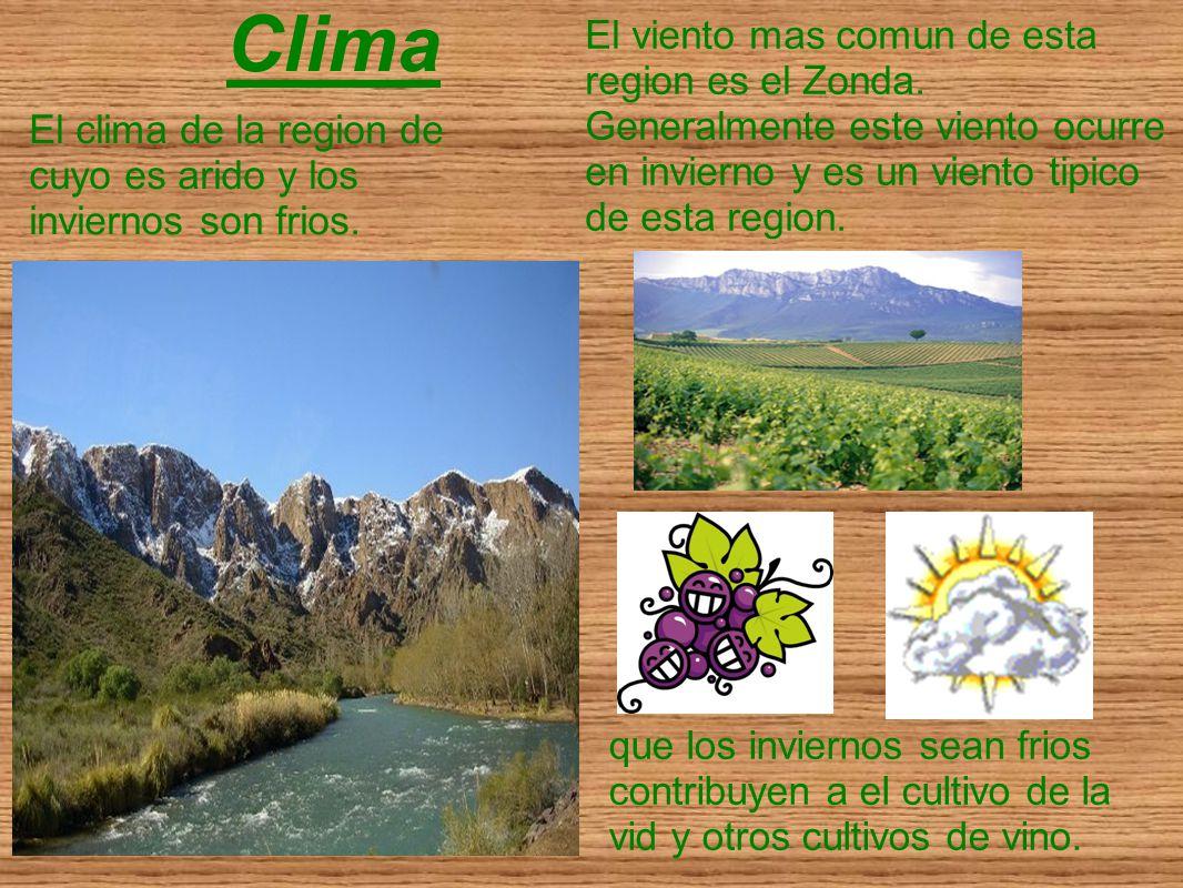 Clima El clima de la region de cuyo es arido y los inviernos son frios. que los inviernos sean frios contribuyen a el cultivo de la vid y otros cultiv