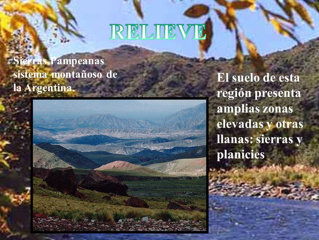 El suelo de esta región presenta amplias zonas elevadas y otras llanas: sierras y planicies Sierras Pampeanas sistema montañoso de la Argentina.