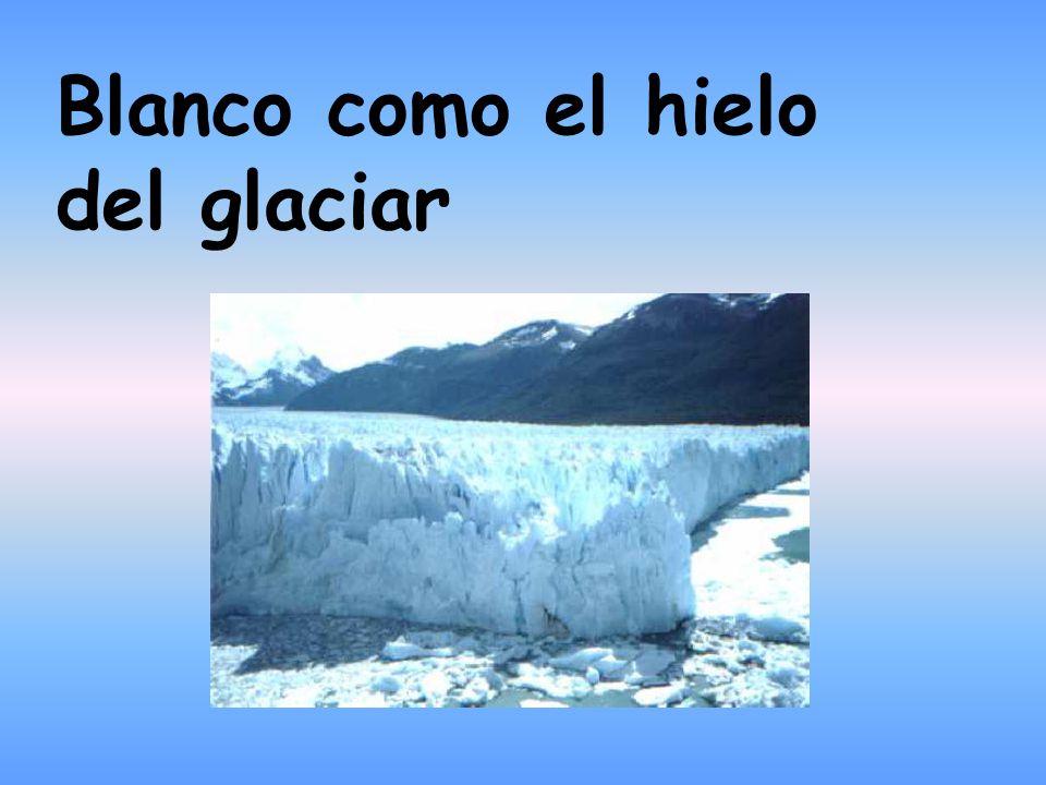 Blanco como el hielo del glaciar