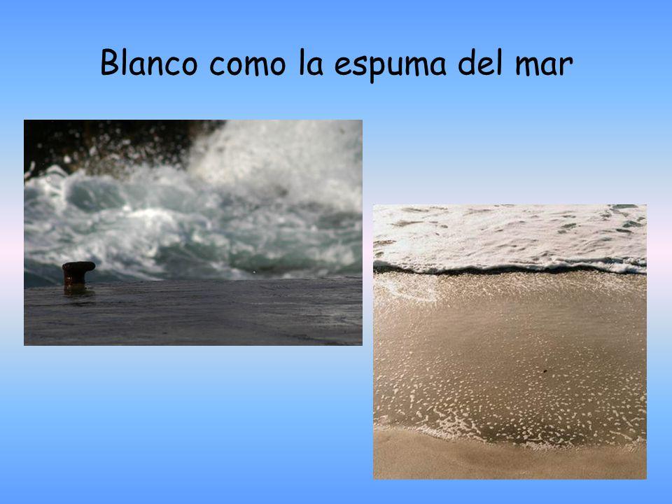 Blanco como la espuma del mar