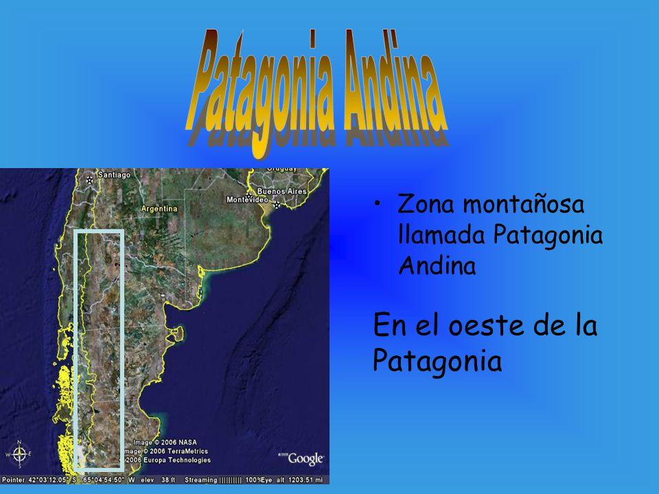 Zona montañosa llamada Patagonia Andina En el oeste de la Patagonia