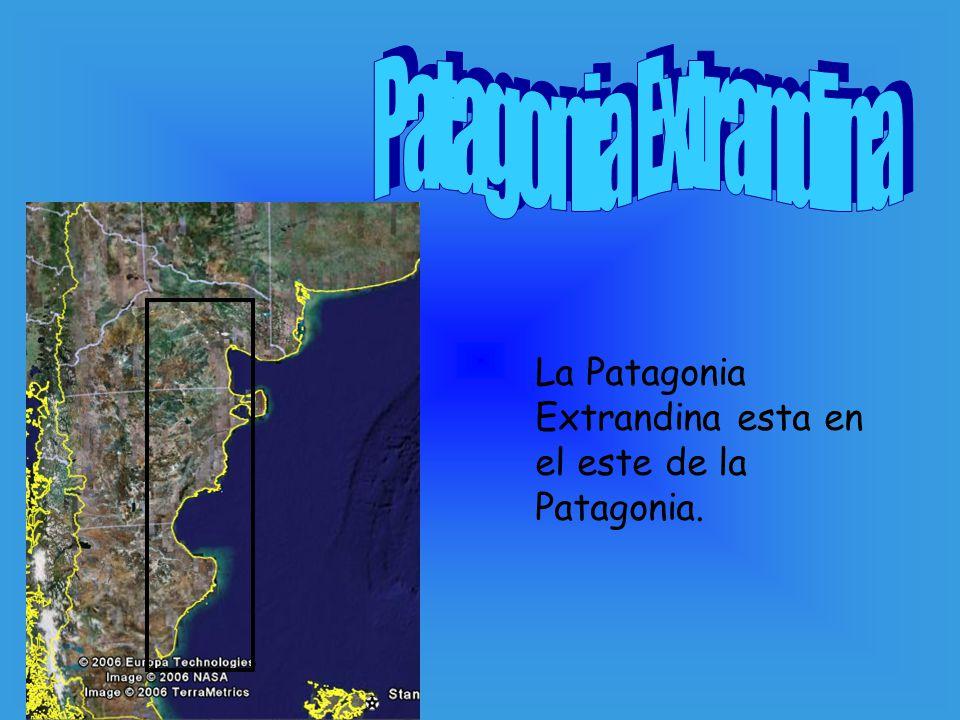 La Patagonia Extrandina esta en el este de la Patagonia.