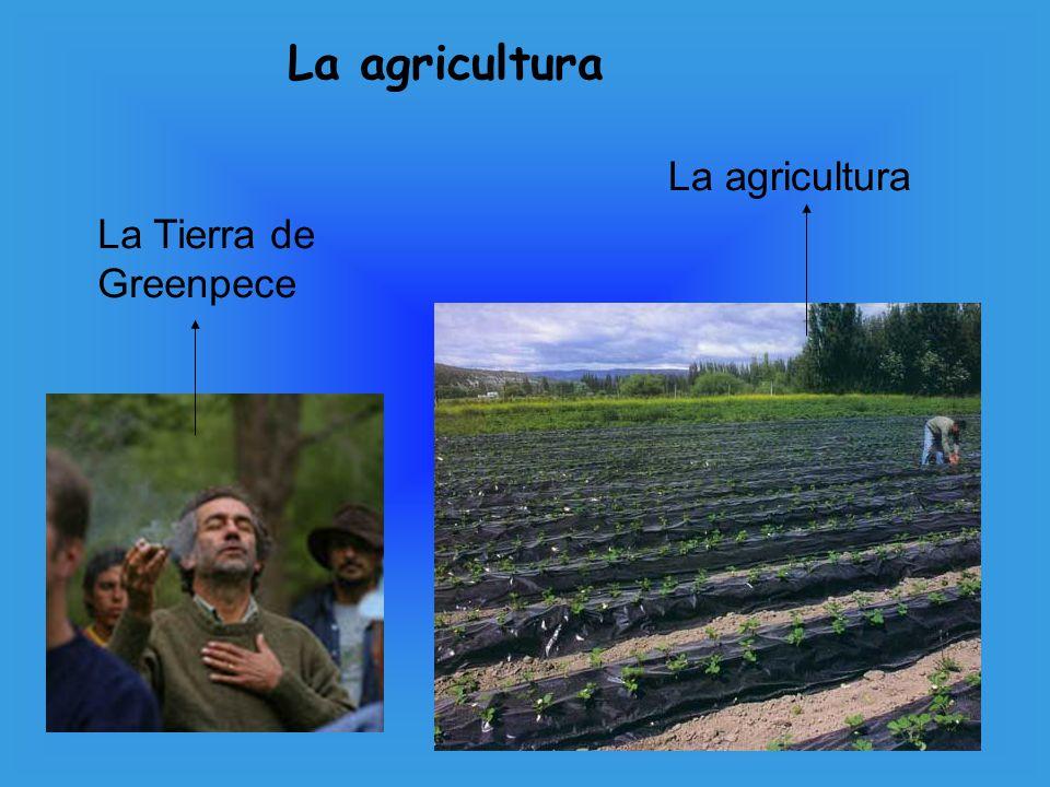 La Tierra de Greenpece La agricultura