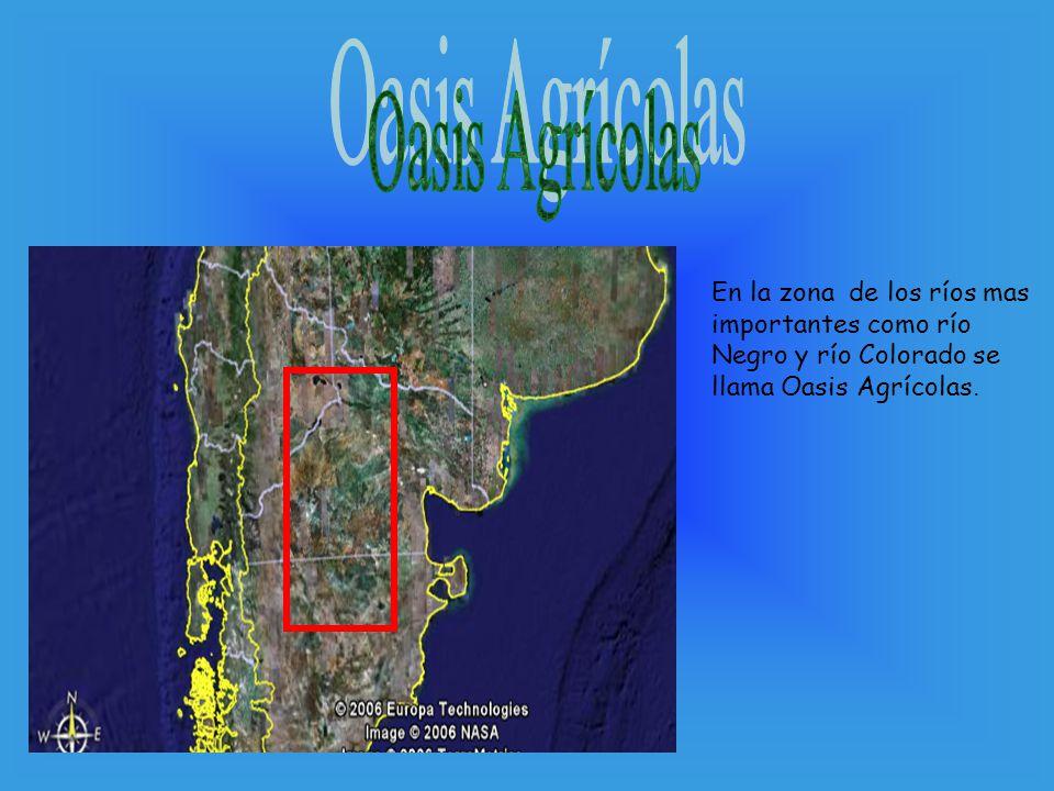 En la zona de los ríos mas importantes como río Negro y río Colorado se llama Oasis Agrícolas.
