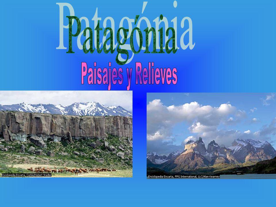 El Perito Moreno con 5 km de frente y unos 60 m de altura.