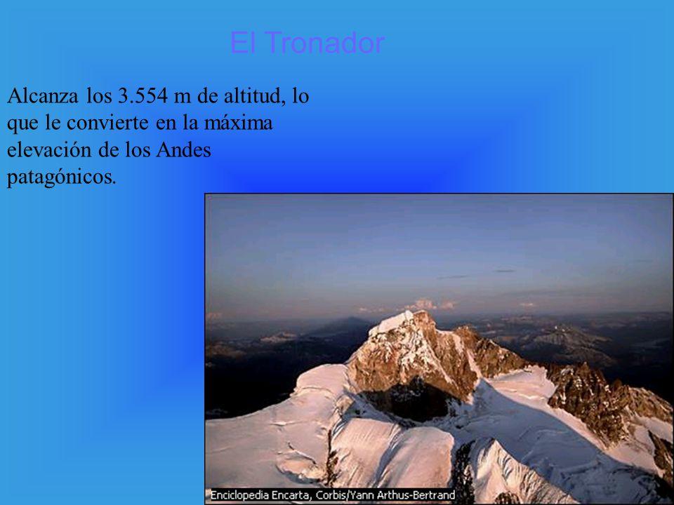 Alcanza los 3.554 m de altitud, lo que le convierte en la máxima elevación de los Andes patagónicos. El Tronador