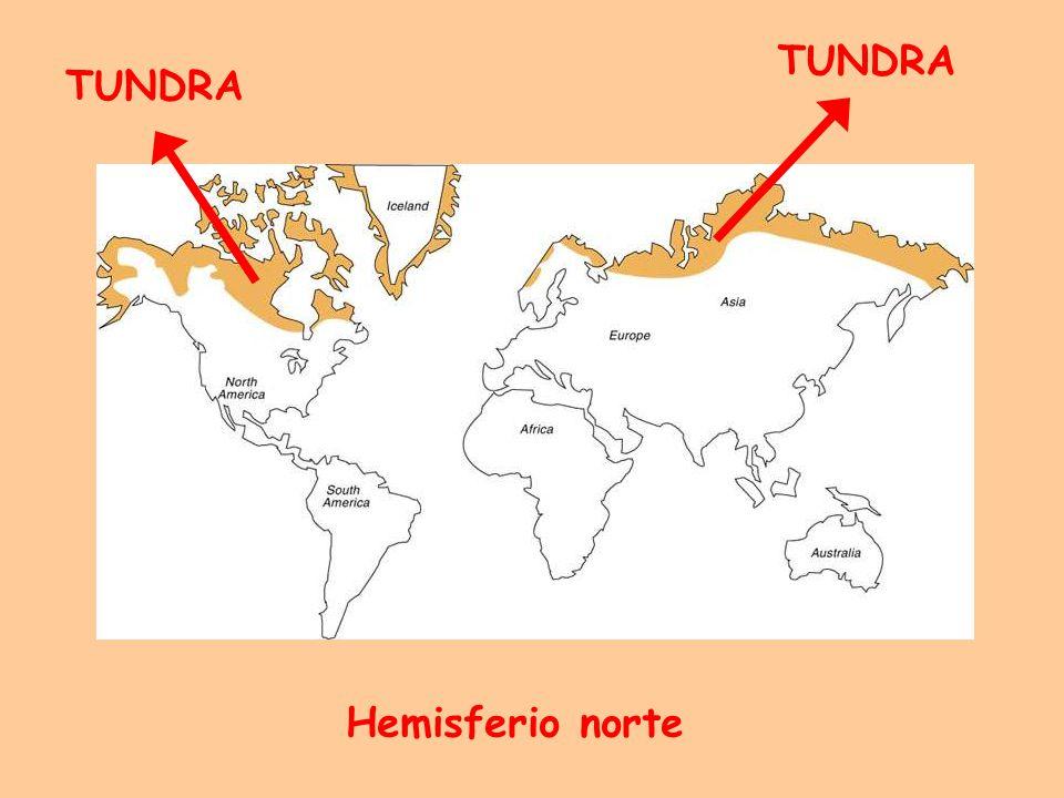 distribución circumpolar. Península Antártica e islas adyacentes.