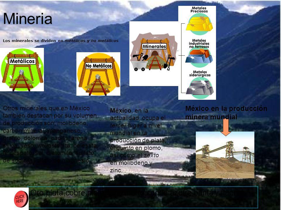 Y Ahora … Suelo El suelo se forma por la accion de 5 factores Materia organica Clima Minerales Relieve Tiempo.