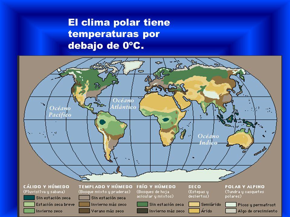 El clima polar tiene temperaturas por debajo de 0ºC.