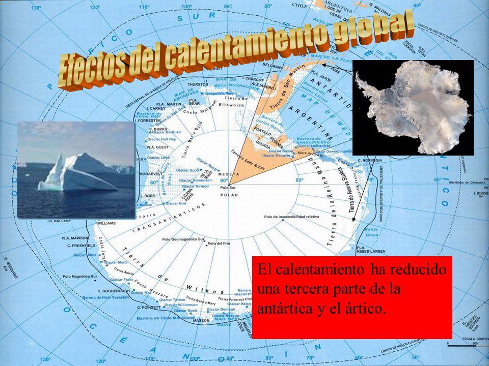 El calentamiento ha reducido una tercera parte de la antártica y el ártico.