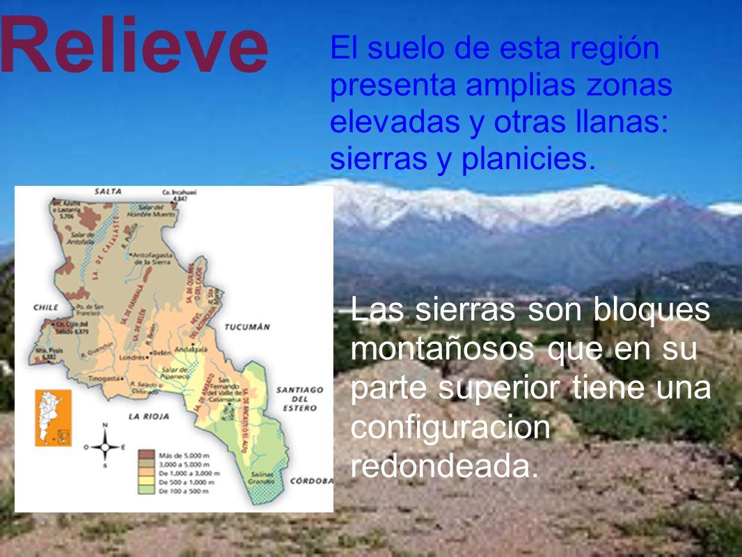 Relieve El suelo de esta región presenta amplias zonas elevadas y otras llanas: sierras y planicies.