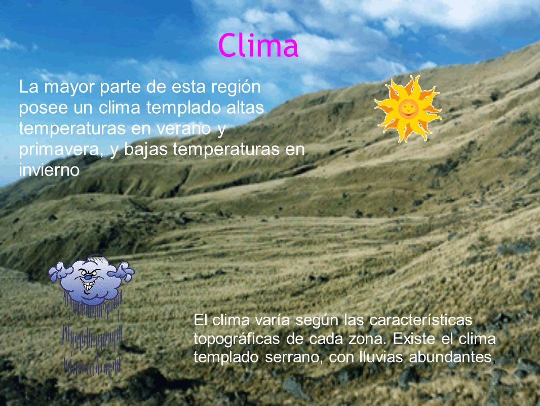 Clima La mayor parte de esta región posee un clima templado altas temperaturas en verano y primavera, y bajas temperaturas en invierno El clima varía según las características topográficas de cada zona.