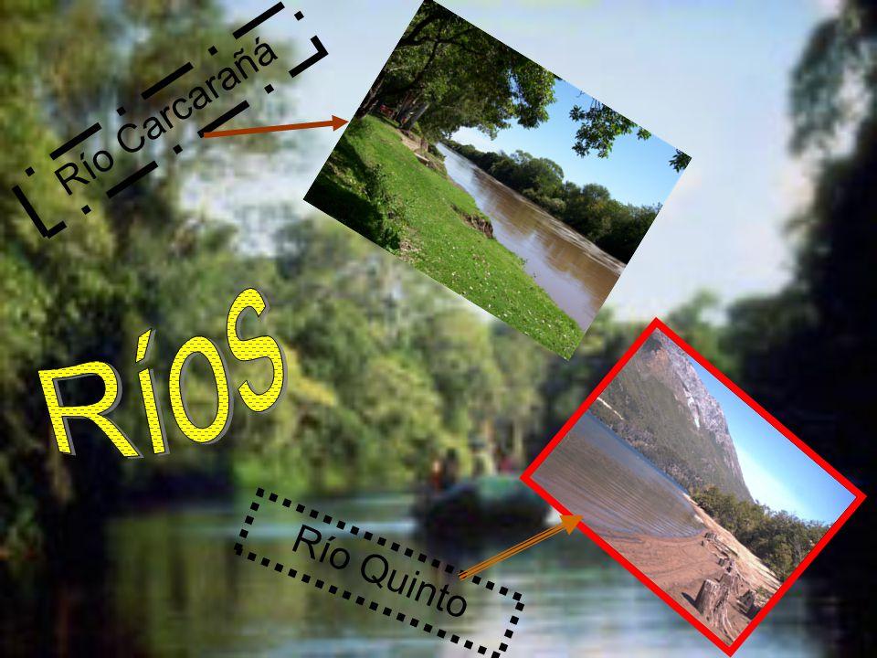 Río Quinto Río Carcarañá