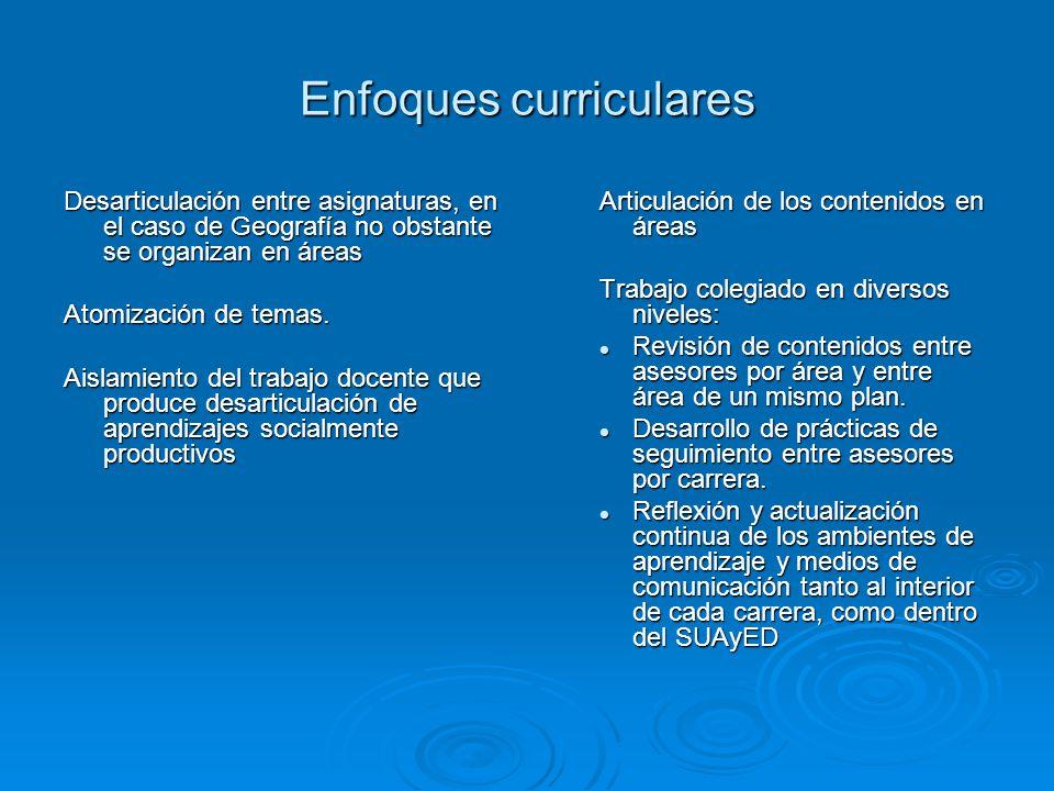 Enfoques curriculares Desarticulación entre asignaturas, en el caso de Geografía no obstante se organizan en áreas Atomización de temas. Aislamiento d