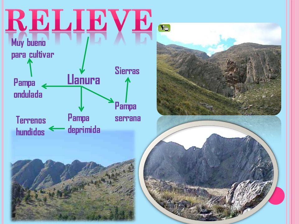 Llanura Pampa ondulada Pampa deprimida Pampa serrana Muy bueno para cultivar Terrenos hundidos Sierras