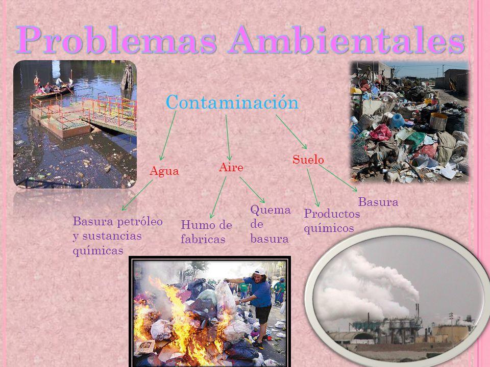 Contaminación Suelo Aire Agua Basura petróleo y sustancias químicas Quema de basura Humo de fabricas Basura Productos químicos