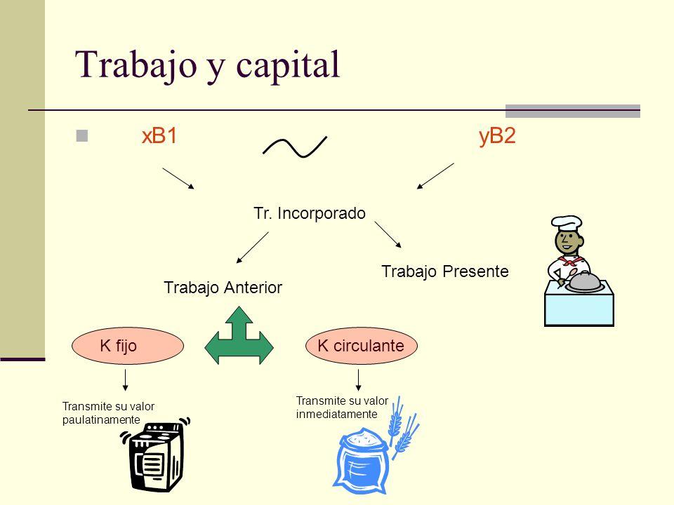 Trabajo y capital xB1yB2 Tr. Incorporado Trabajo Anterior Trabajo Presente K circulanteK fijo Transmite su valor paulatinamente Transmite su valor inm