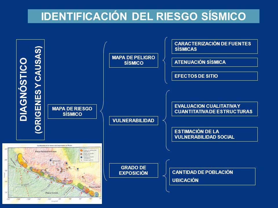 1.CARACTERIZACIÓN DE FUENTES SÍSMICAS PELIGRO SÍSMICO Redes Sismológicas y Acelerográficas Tipo de fuente sísmica Historia sísmica (Catalogos historicos) Complejidad (Duración, Directividad) Precursores (Deformación cortical, variaciones de sismicidad) Geología de la región Curvas de atenuación de la energía sísmica Estratigrafía del sitio Modelos de Amplificación Interpolación de Espectros 2.
