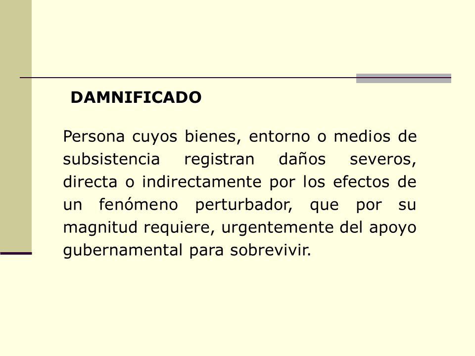 Persona cuyos bienes, entorno o medios de subsistencia registran daños severos, directa o indirectamente por los efectos de un fenómeno perturbador, q