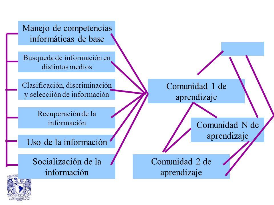 Manejo de competencias informáticas de base Busqueda de información en distintos medios Clasificación, discriminación y selecciión de información Recuperación de la información Uso de la información Socialización de la información Comunidad 1 de aprendizaje Comunidad 2 de aprendizaje Comunidad N de aprendizaje