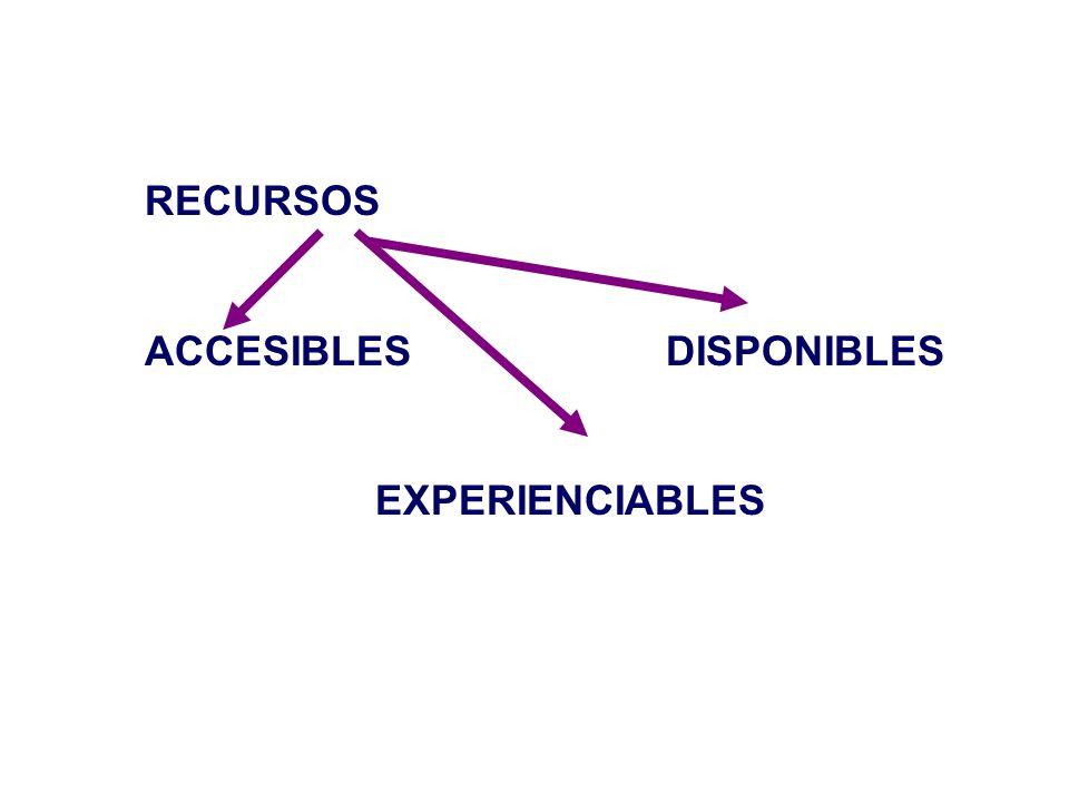 RECURSOS ACCESIBLES DISPONIBLES EXPERIENCIABLES