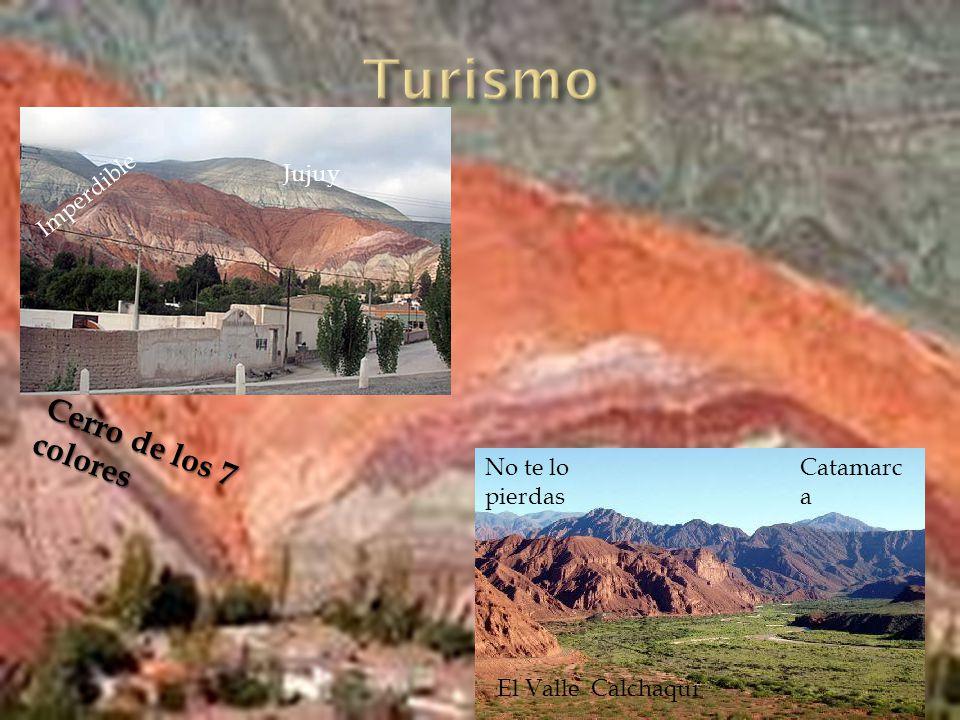 El noroeste presenta en una rica vegetacion en arrayanes, alisos, palo blanco,palo amarillo, laureles, pinos del cerro, timboes y helechos, horco molle y cactus.
