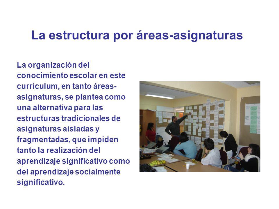 La estructura por áreas-asignaturas Áreas curriculares Se denomina área curricular a una integración o articulación de asignaturas afines, en cuanto a