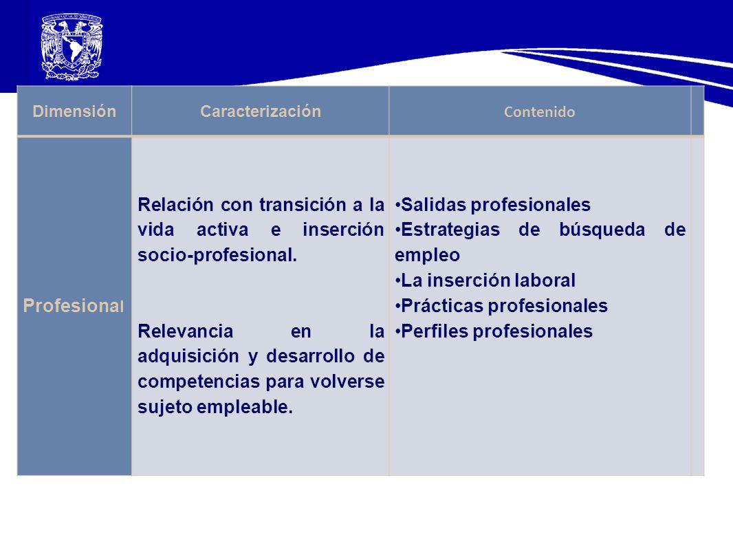 DimensiónCaracterización Contenido Profesiona l Relación con transición a la vida activa e inserción socio-profesional. Relevancia en la adquisición y