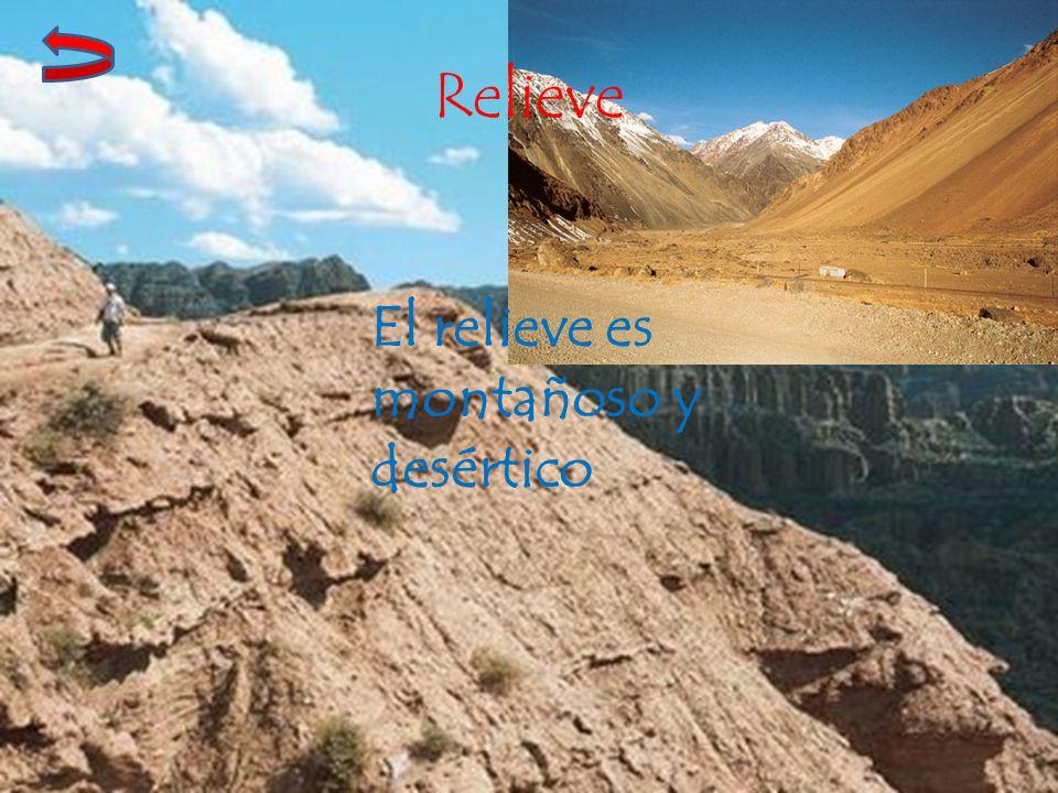 Relieve El relieve es montañoso y desértico