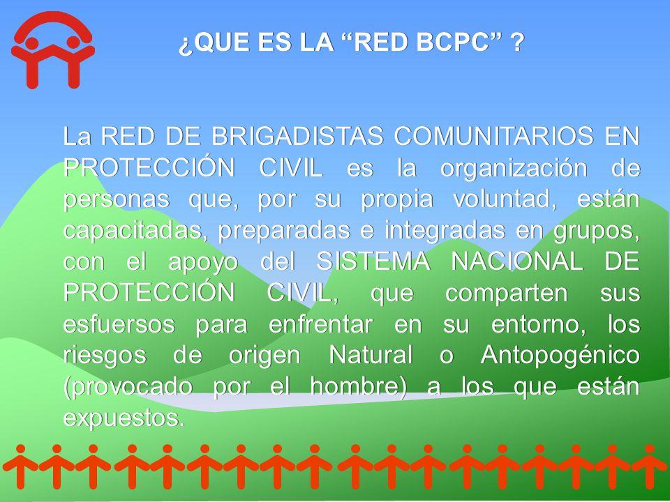 ¿QUE SE PROPONE LA RED BCPC .