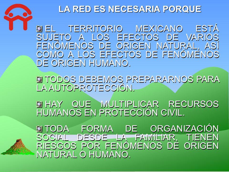 ESTRUCTURA DE LA RED ACTOR BRIGADISTA BRIGADISTA Persona en lo individual, familias, fundaciones, agrupaciones, y en general estructura privada o social.