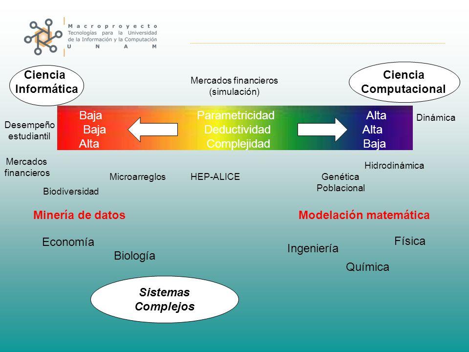 Ciencia Informática Ciencia Computacional Modelación matemática Hidrodinámica Minería de datos Mercados financieros Microarreglos Biodiversidad Desemp