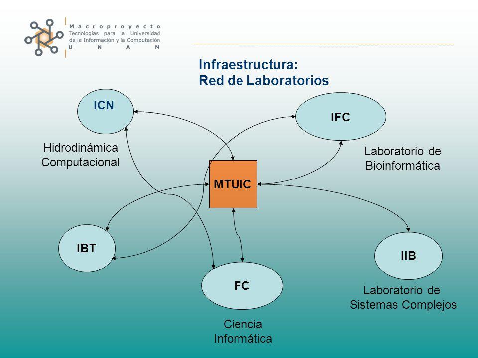 Infraestructura: Red de Laboratorios IBT ICN IIB IFC FC MTUIC Laboratorio de Sistemas Complejos Laboratorio de Bioinformática Hidrodinámica Computacio
