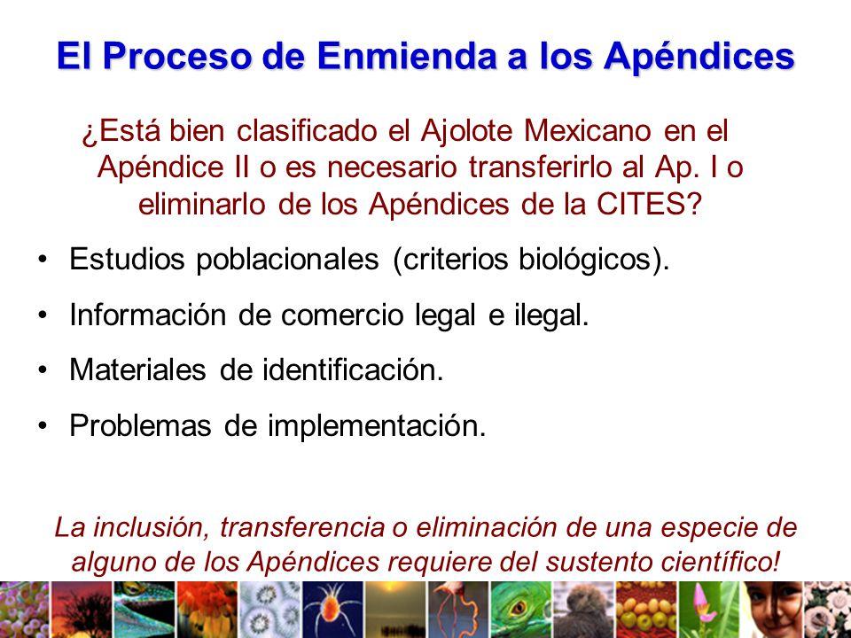 El Proceso de Enmienda a los Apéndices ¿Está bien clasificado el Ajolote Mexicano en el Apéndice II o es necesario transferirlo al Ap.