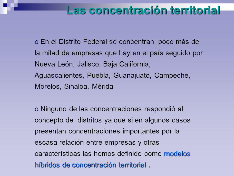 Las concentración territorial o En el Distrito Federal se concentran poco más de la mitad de empresas que hay en el país seguido por Nueva León, Jalisco, Baja California, Aguascalientes, Puebla, Guanajuato, Campeche, Morelos, Sinaloa, Mérida modelos híbridos de concentración territorial.