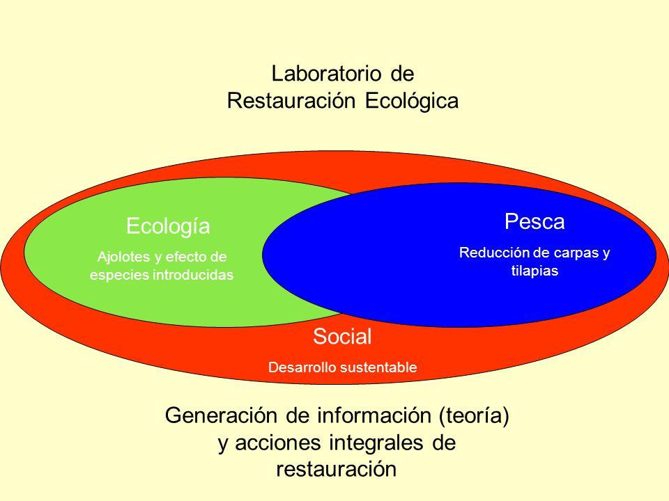 Laboratorio de Restauración Ecológica Generación de información (teoría) y acciones integrales de restauración Social Desarrollo sustentable Ecología