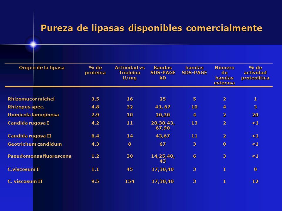 Origen de la lipasa % de proteína Actividad vs Trioleína U/mg Bandas SDS-PAGE kD bandas SDS-PAGE Número de bandas esterasa % de actividad proteolítica