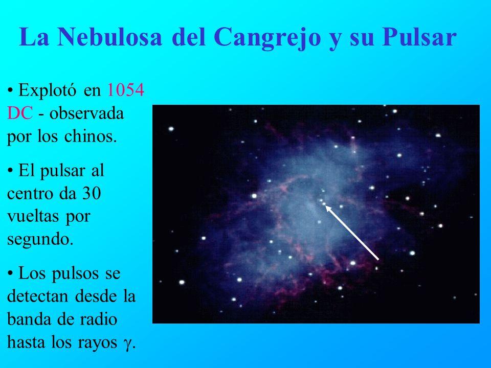 La Nebulosa del Cangrejo y su Pulsar Explotó en 1054 DC - observada por los chinos. El pulsar al centro da 30 vueltas por segundo. Los pulsos se detec